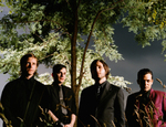 Interpol_trees_2